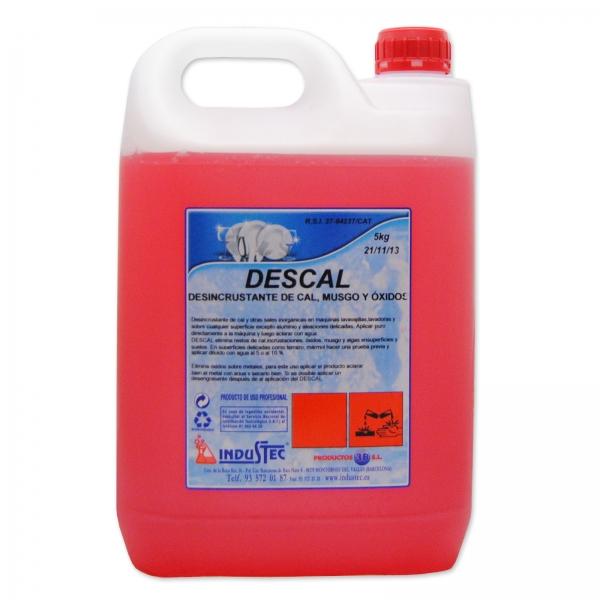 DESCAL 6L
